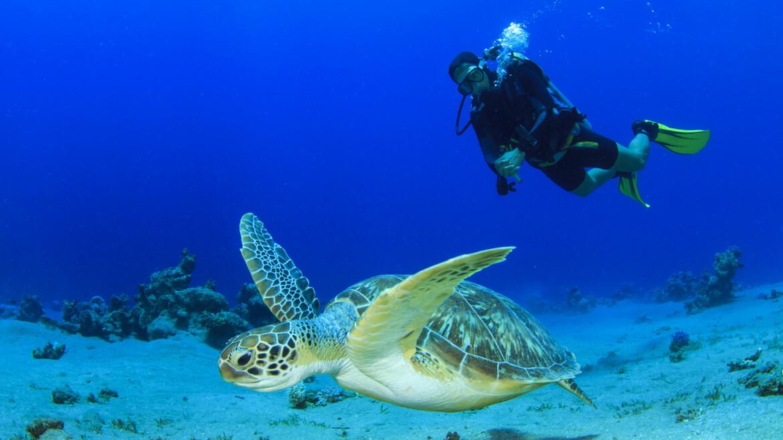 eurodivers-diving-center06